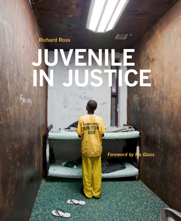Juvenile In Justice book cover